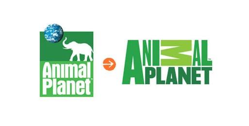 animal-planet-rebranding